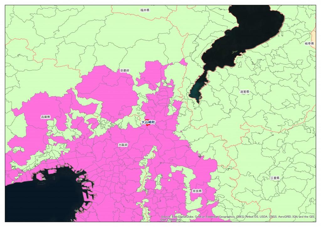 地積規模の大きな宅地の評価 フローチャート